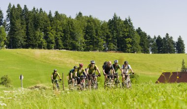 active holidays in Black forest