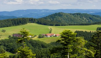 Accentuating your conference/meeting in black forest