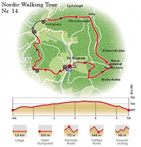 nordic walking throughblack forest