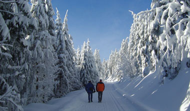 Winter hiking and cross-country skiing